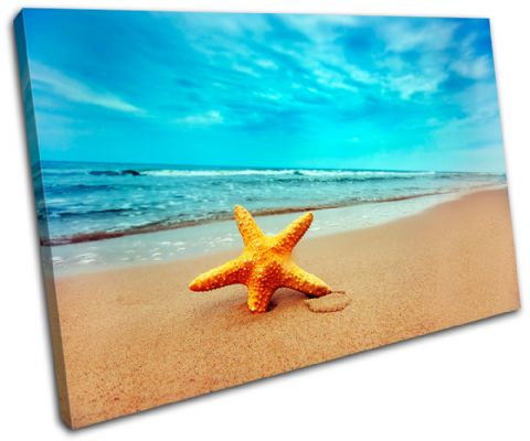 Beach Starfish Seascape Bathroom - 13-2223(00B)-SG32-LO